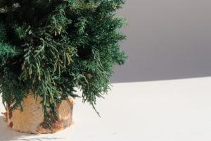 長野 松本 フラワー教室 magiq 東京堂 フェアリール ツリー 高級造花 クリスマス レッスン オーダー プリザーブドフラワー クリスマスツリー