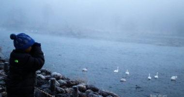 バーダーボーイの人生初白鳥